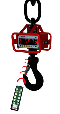 View Crane Scales Product